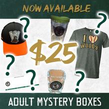 Adult Mystery Box